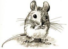 * a mouse *
