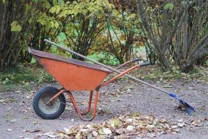 * este wheelbarrow *