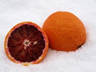 blood-orange-257902_960_720