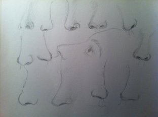 nose_study_by_yellowquiet-d5mgoca