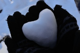 heart-1416344_960_720
