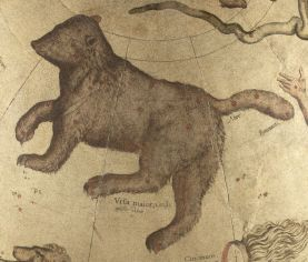 Ursa_major_-_Mercator